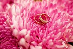 Belle fedi nuziali brillanti con i diamanti sui fiori rosa Fotografie Stock