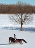 Belle femme équestre dans les bois d'hiver Photos stock