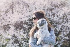 Belle femme étreignant son chien de caniche blanc dans un jardin de ressort Images stock