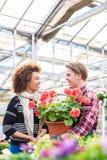 Belle femme achetant un pélargonium rouge au conseil d'un fleuriste images stock