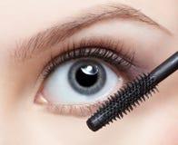 Belle femme appliquant le mascara Photos stock