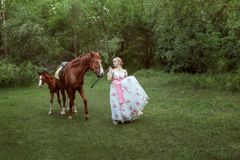 Belle femme avec des chevaux dans la forêt Photo libre de droits
