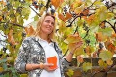 Belle femme avec la tasse orange aux vignes Images libres de droits