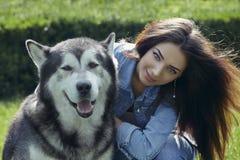 Belle femme avec le chien de Malamute Image stock