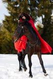 Belle femme avec le manteau rouge avec le cheval extérieur en hiver photographie stock