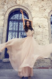 Belle femme avec les cheveux foncés dans la robe en soie luxueuse Images libres de droits