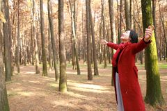 Belle femme d'automne/chute heureuse dans la pose gratuite de liberté en nature d'étreinte de parc d'automne Images stock