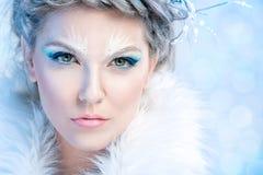 Belle femme d'hiver photographie stock
