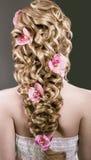 Belle femme dans l'image de la jeune mariée Cheveux de beauté Vue arrière de coiffure photographie stock libre de droits