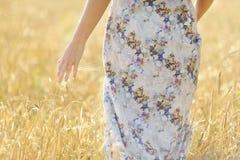Belle femme dans le domaine de blé au coucher du soleil Photo stock