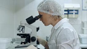 Belle femme dans un laboratoire fonctionnant avec un microscope photos libres de droits