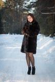 Belle femme dans un manteau de fourrure dans la forêt d'hiver Photographie stock