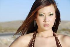Belle femme de brunette Photographie stock libre de droits