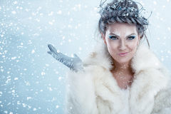 Belle femme de l'hiver photographie stock libre de droits