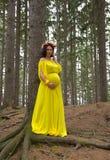 Belle femme enceinte photos libres de droits
