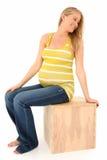 Belle femme enceinte photographie stock libre de droits