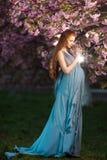 Belle femme enceinte dans le jardin de floraison Image libre de droits
