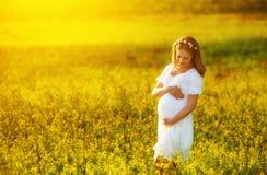 Belle femme enceinte dans le pré de nature d'été avec le flo jaune image libre de droits