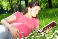 Belle femme enceinte en stationnement Photos stock
