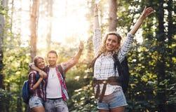 Belle femme et amis trimardant dans la forêt Photographie stock