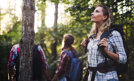 Belle femme et amis trimardant dans la forêt Images stock