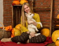 Belle femme heureuse avec le chiot enroué avec la récolte d'automne sur un fond de mur de briques Photographie stock libre de droits