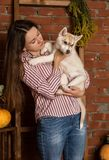 Belle femme heureuse avec le chiot enroué avec la récolte d'automne sur un fond de mur de briques Image stock