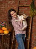 Belle femme heureuse avec le chiot enroué avec la récolte d'automne sur un fond de mur de briques Images libres de droits