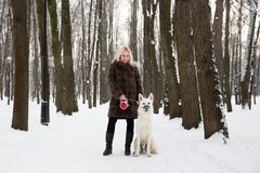 Belle femme marchant avec le chien de berger suisse blanc en hiver Images stock