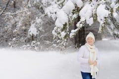 Belle femme marchant en parc d'hiver Image stock