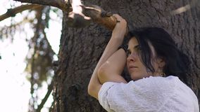 Belle femme recherchant se tenante près de l'arbre, dans l'amour avec la nature, joli visage banque de vidéos