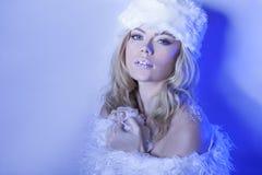 Belle femme séduisante dans le bleu d'hiver photographie stock libre de droits
