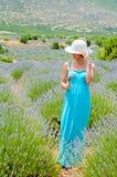Belle femme seul marchant dans des domaines de lavander Image libre de droits