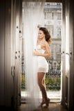 Belle femme sexy de lingerie de brune derrière brusque Photographie stock