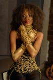 Belle femme sud-africaine avec le collier en bronze et le maquillage naturel tenant des mains sur le cou regardant l'appareil-pho photo libre de droits