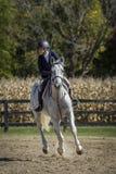 Belle femme sur le cheval galopant Photo stock
