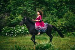 Belle femme sur un cheval Photo libre de droits
