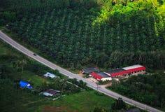 Belle ferme thaïlandaise Photographie stock libre de droits