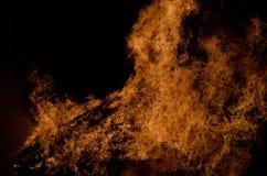 Belle fiamme alte brucianti calde dal falò Immagini Stock Libere da Diritti