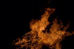 Belle fiamme alte brucianti calde dal falò Fotografie Stock Libere da Diritti