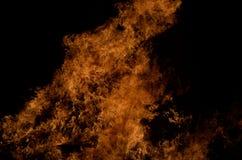 Belle fiamme alte brucianti calde dal falò Immagine Stock