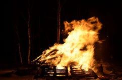 Belle fiamme alte brucianti calde dal falò sul fondo scuro di inverno Fotografia Stock