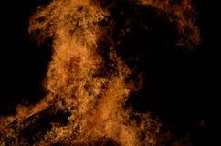 Belle fiamme alte brucianti calde dal falò sull'inverno scuro Fotografia Stock