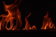 Belle fiamme del fuoco su fondo nero Fotografia Stock