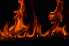 Belle fiamme del fuoco su fondo nero Fotografie Stock