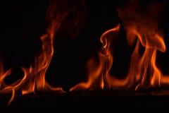 Belle fiamme del fuoco su fondo nero Immagini Stock Libere da Diritti