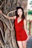 Belle fille asiatique de foyer mou image libre de droits