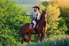 Belle fille avec le cheval de châtaigne dans la forêt de soirée Photo libre de droits