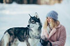 Belle fille avec le chien de traîneau de chien en bois neigeux Images libres de droits