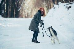 Belle fille avec le chien de traîneau de chien en bois neigeux Image libre de droits